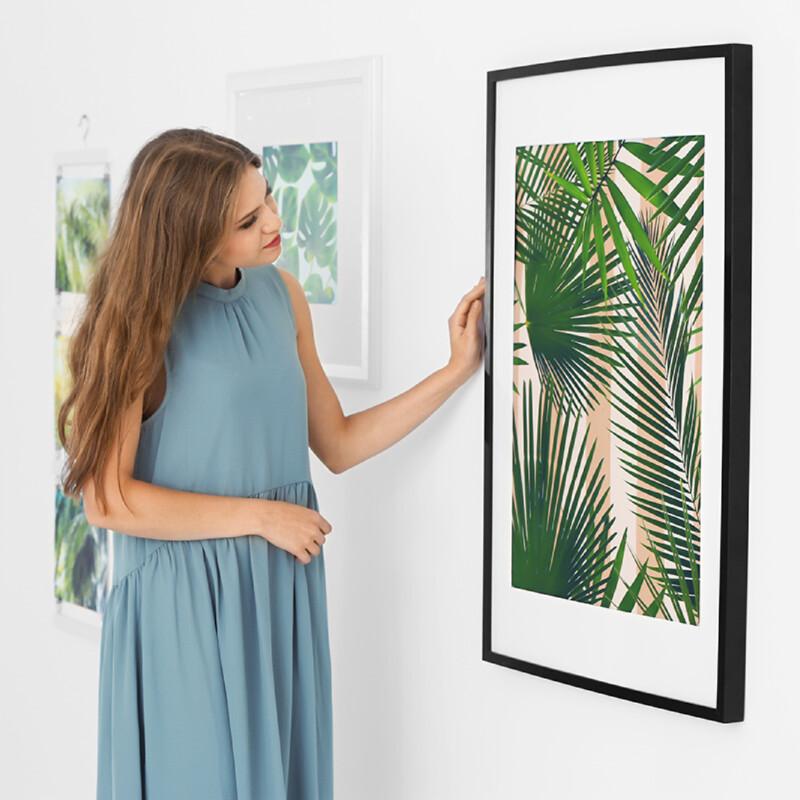 Coala Poster Semi-Gloss
